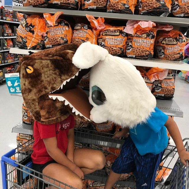 TRex eating a giant rabbit! funnykids